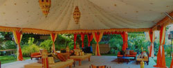 Tent House Chandigarh