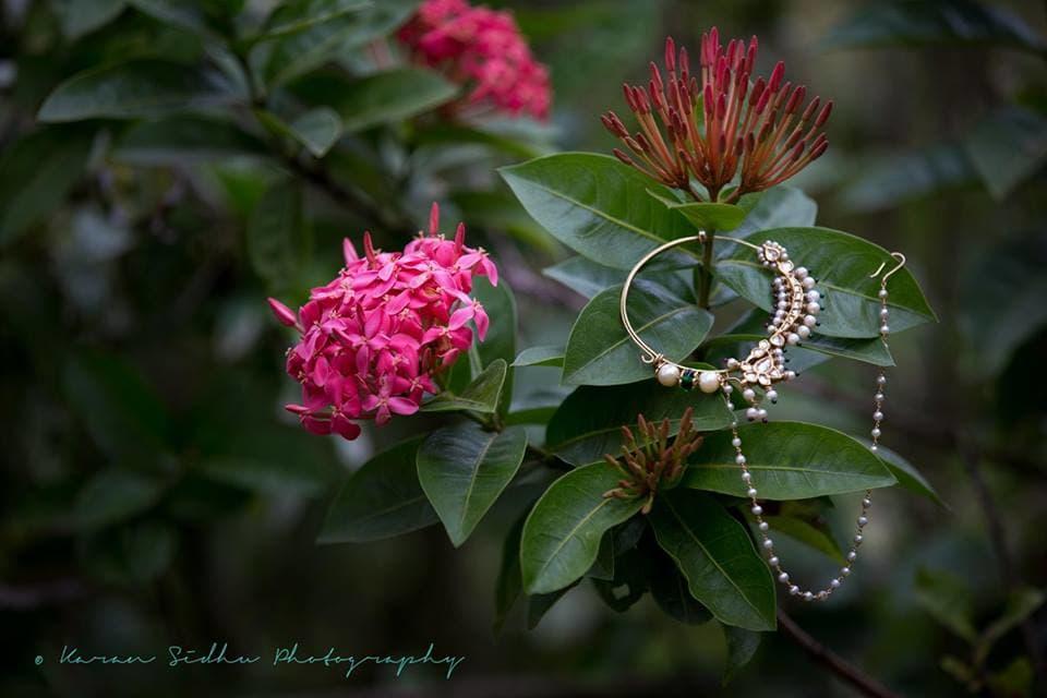 nose ring:karan sidhu photography