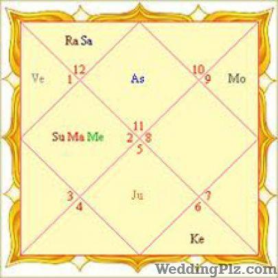 Future Vision Astrologers weddingplz
