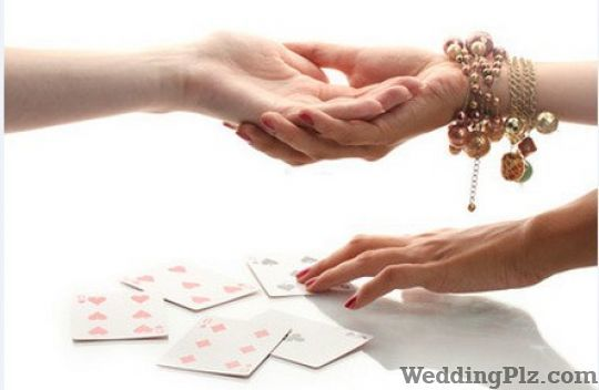 Acharya Vipin Gaur Astrologers weddingplz