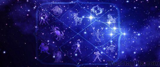 Astrologer Pardeep Dang Astrologers weddingplz