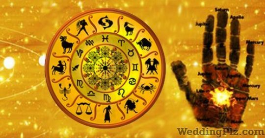 Pandit Rohit Jain Astrologers weddingplz