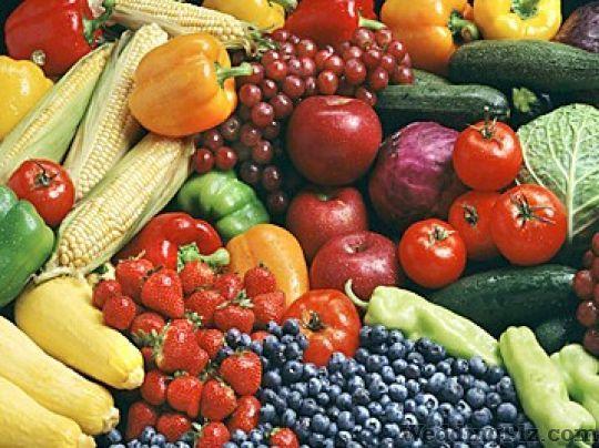 Harleen Bakshi Dieticians and Nutritionists weddingplz