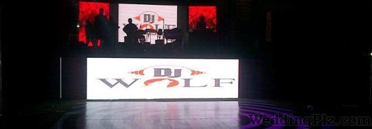 DJ Wolf Events and Entertainment DJ weddingplz