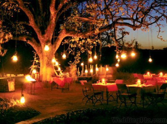 Wedlocks Event Management Companies weddingplz