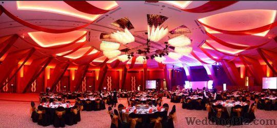 Cosmic Lights Entertainment Event Management Companies weddingplz