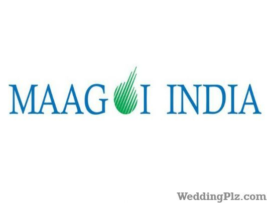 Maagoi India Event Management Companies weddingplz