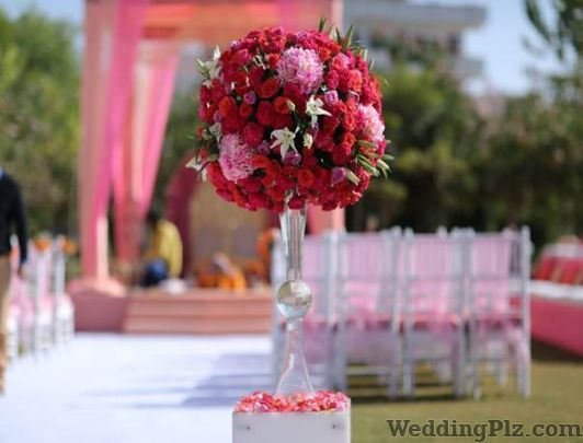 Rajinder Flower House Florists weddingplz