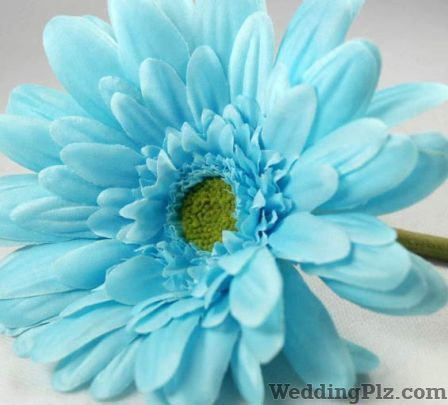 Biswasundari Florist Florists weddingplz