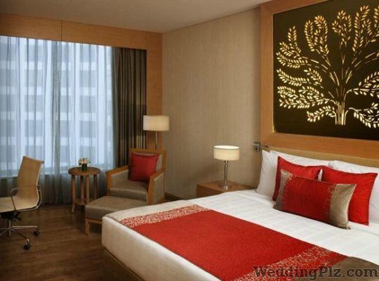Radisson Blu Hotel and Resorts Hotels weddingplz