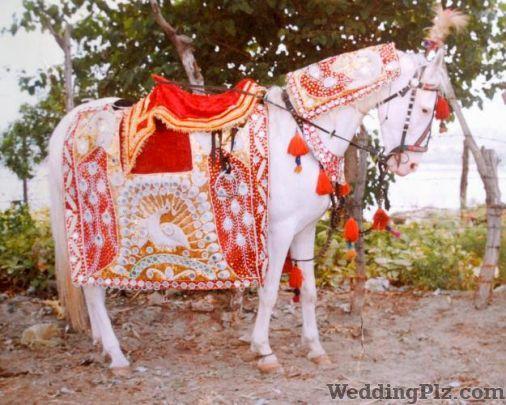 Rakesh Band Bands weddingplz