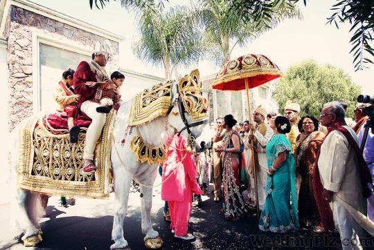 Rajdhani Band Bands weddingplz