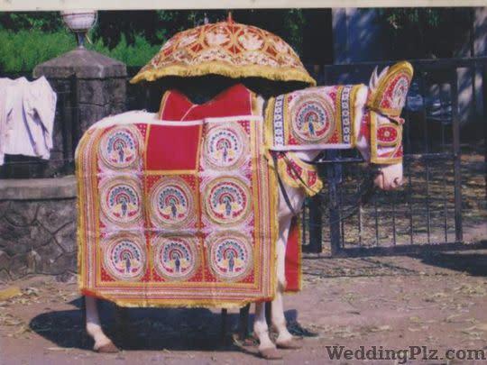 Ravi Brass Band Bands weddingplz