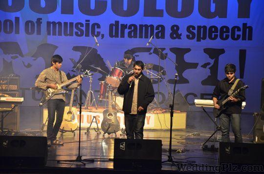 Anurag Dixit Musicology Live Performers weddingplz