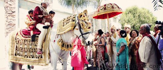 Raman Movies Photographers and Videographers weddingplz