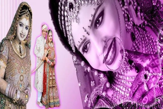 Zoom Photo Color Lab and Digital Studio Photographers and Videographers weddingplz