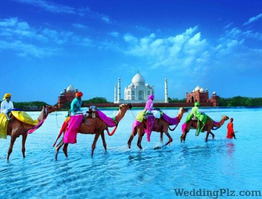 Jyoti Travels Pvt Ltd Travel Agents weddingplz