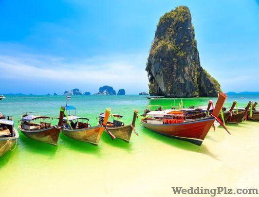 Nirvana India Enterprise Travel Agents weddingplz