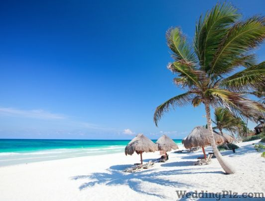 Viva Tourism Travel Agents weddingplz