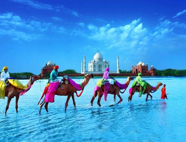 Balchandanis Travel Services Pvt. Ltd. Travel Agents weddingplz
