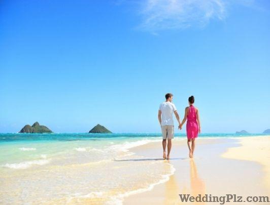 Tanvi Travels Travel Agents weddingplz
