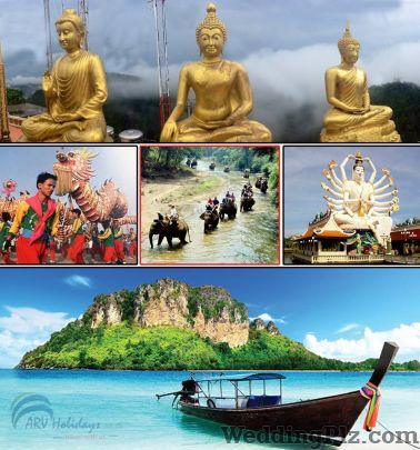 ARV Holidays Pvt Ltd Travel Agents weddingplz