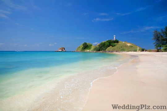 Clearship Travels and Tours Pvt Ltd Travel Agents weddingplz
