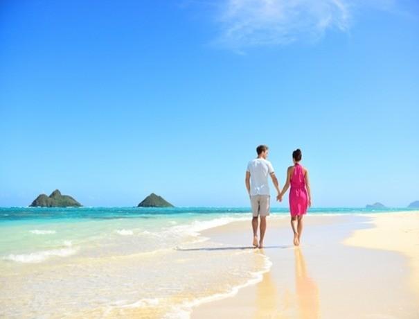Aditya Airways Services Pvt. Ltd. Travel Agents weddingplz