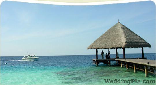 DZZ Travels Travel Agents weddingplz