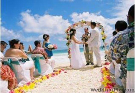 Kritika Wedding N Entertainment Pvt Ltd Wedding Planners weddingplz
