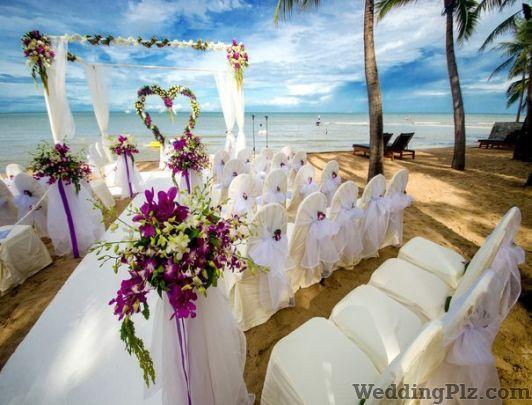 Golden Petals and Daffodils Wedding Planners weddingplz