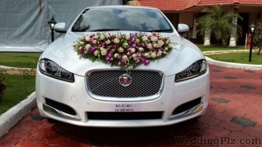 ANT Travels Pvt Ltd Luxury Cars on Rent weddingplz
