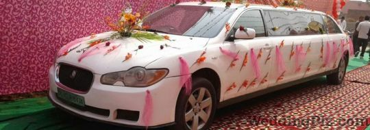 Malik Tour and Travel Luxury Cars on Rent weddingplz