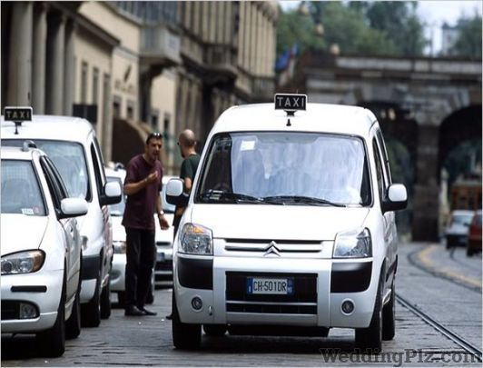 Chardi Kala Tour and Travels Taxi Services weddingplz