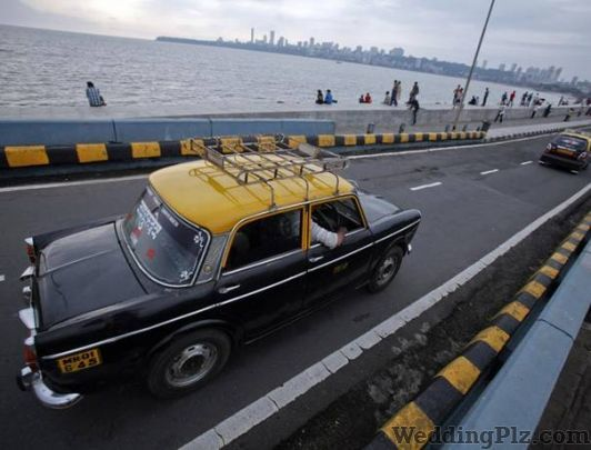 Global Tours And Travels Taxi Services weddingplz