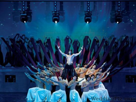 Shiamak Choreographers weddingplz