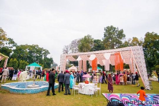 Stallion Events Decorators weddingplz